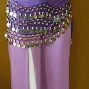 Belly Dance Costume (purple-gold)